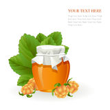 Cloudberry jam jar with fresh berry on white Royalty Free Stock Image