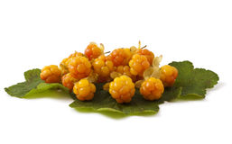 Cloudberry with leaves on white Royalty Free Stock Image