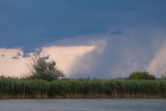 Cloudburst over a lake with reedbelt Royalty Free Stock Photo
