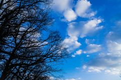 Cloudchasing stock fotografie