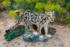A Clouded Leopard statue made from Lego bricks. CHESTER, UNITED KINGDOM - MARCH 27TH 2019: A Clouded Leopard statue made from Lego bricks royalty free stock images