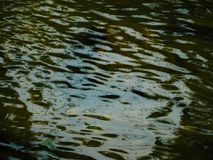 Clouded ripple river Royalty Free Stock Images