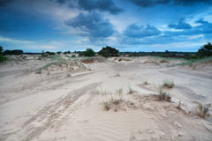 Clouded sky over sand dunes Royalty Free Stock Image