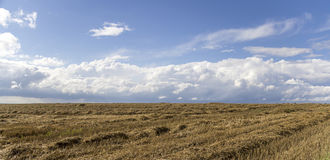 Rural landscape with clouds Stock Images