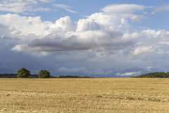 Rural landscape with clouds Royalty Free Stock Photography