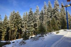 Cloudes and trees, winter landscape in Šumava in Železná Ruda, czech republic Royalty Free Stock Photography