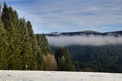 Cloudes and trees, winter landscape in Šumava in Železná Ruda, czech republic Stock Photography