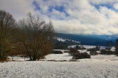 Cloudes and trees, winter landscape in Šumava in Železná Ruda, czech republic Royalty Free Stock Image
