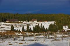 Cloudes and trees, winter landscape in Šumava in Horská Kvilda, Czech republic Stock Photos