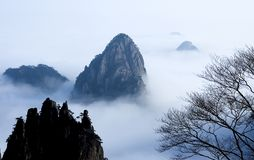 Cloudland. Primary-colors-hill huangshan cloudland backgrounds seasonal and holiday out-of-doors naturalness Royalty Free Stock Image