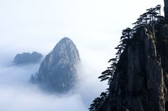 Cloudland. Primary-colors-hill huangshan cloudland backgrounds seasonal and holiday out-of-doors naturalness Royalty Free Stock Photo