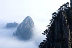 cloudland Royaltyfri Foto