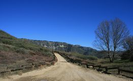 Cloudland Fire Road. Dirt road in the San Bernardino National Forest, California Stock Photography