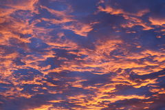 Clouds. The sky and clouds at sunset Royalty Free Stock Photo