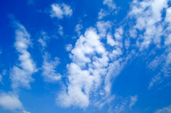 The clouds. The white clouds on background sky Royalty Free Stock Photography