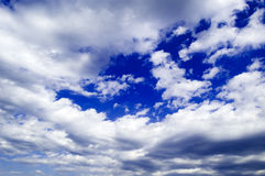 The clouds. The beautiful white clouds and blue sky Stock Photos