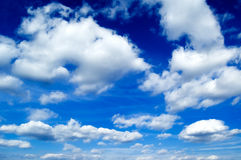 The clouds. The clouds on background blue sky Stock Photography