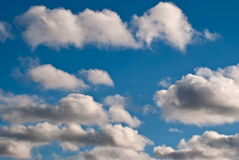 The clouds. stock image