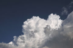 Clouds. White clouds in the after noon Royalty Free Stock Photography