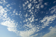 Clouds. Dispersed beautiful clouds on a blue sky Stock Image