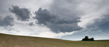 Clouds above the field Royalty Free Stock Photo