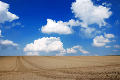 Clouds above a field. White fluffy clouds with blue sky above a deserted brown field stock images