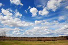 Clouds above woods Royalty Free Stock Image