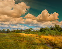 Clouds anf trees Stock Photography