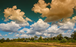 Clouds anf trees Stock Images