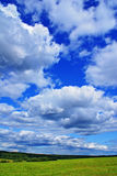 Clouds in blue sky. Summer rural landscape with cloudy sky, green grass and trees Royalty Free Stock Photos
