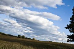 Clouds and Blue sky. White clouds all over in blue sky Stock Photo