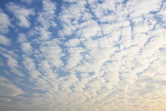 Clouds on the blue sky. Beauty clouds on the blue sky Royalty Free Stock Images