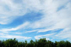 Clouds. Are in blue sky Stock Photography
