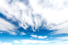 Clouds in the blue sky. Beautiful clouds in the blue sky Stock Image
