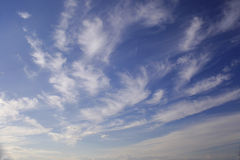 Clouds on blue sky. Cirrus clouds close up on a blue sky Royalty Free Stock Photography