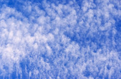 Clouds on a blue sky Royalty Free Stock Images