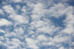 Clouds on blue sky. Fluffy clouds on blue sky Stock Image