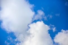 Clouds with blue sky , flying seagull.  Royalty Free Stock Photos