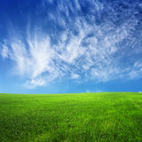 Clouds on blue sky and green field Stock Image