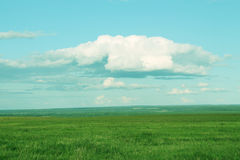 Clouds, blue sky and green grass. Background for design, rich colors backdrop royalty free stock photo