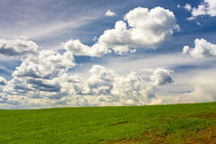 Clouds in blue sky over green crops Royalty Free Stock Photo
