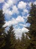 Clouds and the blue sky. In Poltava stock photography