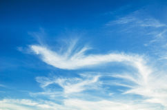 Clouds in the blue sky. White clouds in the blue sky Royalty Free Stock Photo