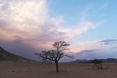 Clouds colored after sunset. Namibia royalty free stock photography