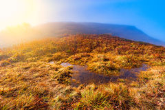 Clouds cover mountain meadow. royalty free stock image