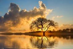 Clouds, Dawn, Lake Stock Images