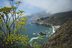 Clouds descend on the highway 1 coast. Yellow flowers frame this coastal shot Royalty Free Stock Photo