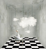 Clouds and ducks in a surreal room. Surrealist room with clouds hanging from wires two beautiful ducks and black and white checkered floor royalty free illustration