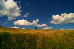 Clouds. Fields beneath the clouds and skies stock image