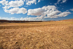 Clouds floating over dry grass land. White clouds floating over dry grass land of plateau in Middle East Stock Image